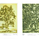 'A Celebration of The Tree' at the Open Door Gallery