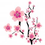 Summer Holidays at Hertford Museum - Week 4: Seasons - Blossoms