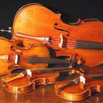 Watford Senior Strings - National Festival of Music for Youth
