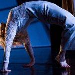 Wayne Parsons Dance | Vestige and Meeting