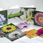 Garden Photo Cards