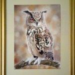 Watchful, Eagle Owl