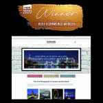 International Website of the Year 2020