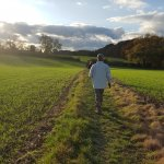 Hertfordshire Health Walks / Countryside and Rights of Way, Hertfordshire County Council