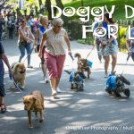 Doggy Dash For Life 2018, Huddersfield