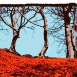 Turning Photographs into Screen Prints at WYPW