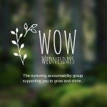 WOW Wednesdays Accountability Membership; Creative Entrepreneurs