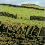 Dry-stone walls