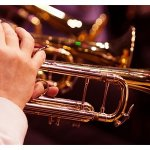 Date for your diary - Brass Ensemble online Festival programme