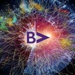 Beyond Violet / Creative Director