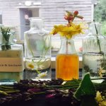 Craft Revolution: Tonics & Tinctures with Tania Bryson – one-day