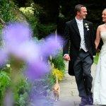 Dartington Hall Wedding Fair
