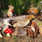 Needle felted Mice and Dormice Workshop