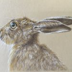 Sands Road Framing Shop/Gallery Shows Onnie Burford-Roe In June