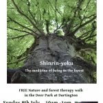 Shinrin-yoku - Forest Therapy walk