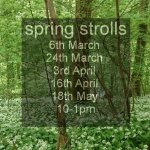 Wander for wellbeing - spring strolls - forest bathing