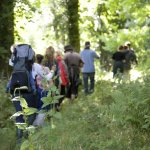 Wildwise: Wild day out for families