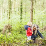 Woodland Wonder: Family day in the Deer Park