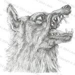 A Wolfs Tale