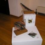 Angela Holmes   At Ariel Centre Gallery.