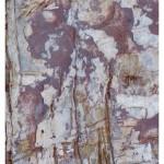Ayrmer Cove Abstract
