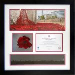 Ceramic Poppy from the Tower Of London
