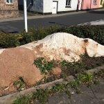Cob horse  Hatherleigh