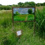 constable - landscape for visual comfort