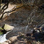 Dartmoor Sedimentary Pool