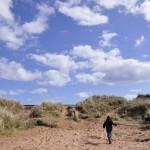 Dawlish dunes and sky
