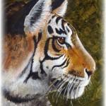 Detail of Tiger & Bird - large acrylic