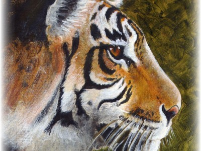 Detail of Tiger & Bird - large acrylic