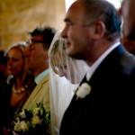 Father & Bride/Wedding