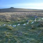 Feet Felt at Shovel Down, Dartmoor