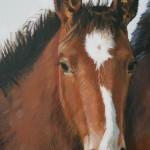 Horses (detail)