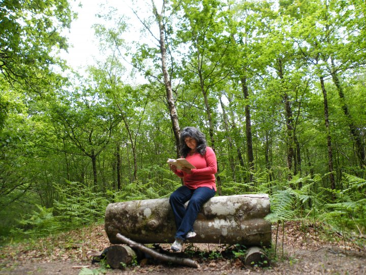 "Marta reading  ""The Forest on the Hill"" in Yarner Wood"