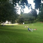 Play on the lawn