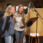 Recording a new If you'd like to....audio installation in U.S.A