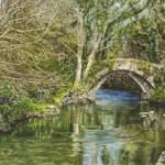 River Avon at Topsham Bridge