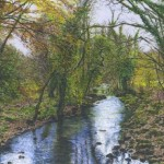 River Teign at Fingle Bridge