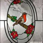 Robin bird in winter