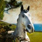 'Sea Horse' - Talland Bay, Cornwall