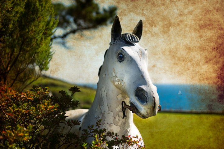 'Sea Horse' - Talland Bay, Cornwall