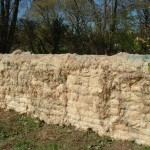 Sheep's Wall Bob Budd