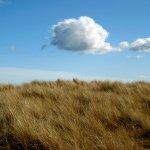 St Cyrus - Aberdeenshire