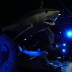 The 3 life size Sharks in Paris