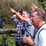 The Bird Watching Course at Berry Head
