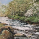 The Dart at Badgers Holt