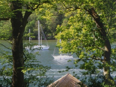 The River Dart from the gardens at Greenway