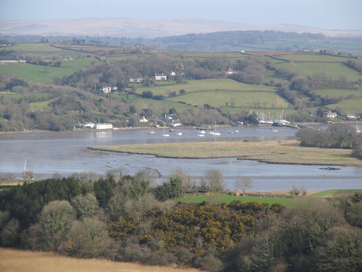 The River Tamar - view across the Valley from Pentillie Castle